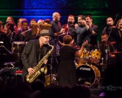 30 year of Gerzina's musical journey